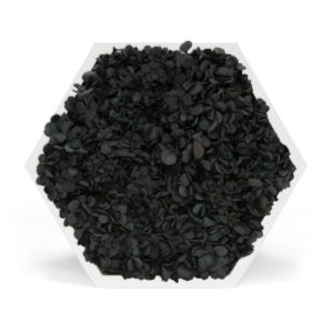 Element 6 Hydrangea Black